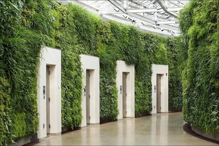 Green walls made of green plants with white doors