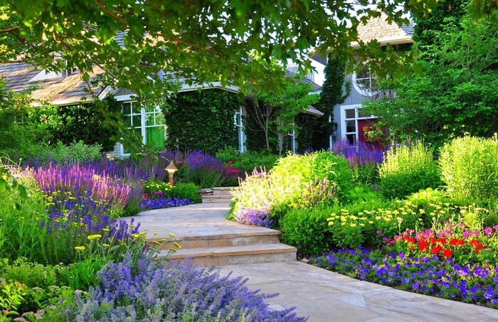 front garden with a pathway surrounded with flowers lavender and other grasses flowers and plants