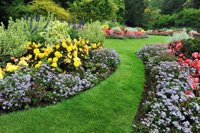 basic landscaping garden with grass flowers and plants arranged in a beautiful display