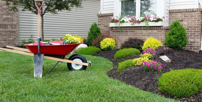 landscaping a small garden piece with flowers and plants
