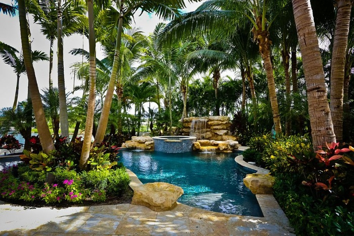 tropical pool with palm trees and a waterfall with greenery around