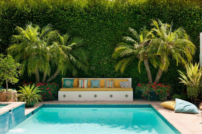 pool with palms and vines and resting area with a sofa