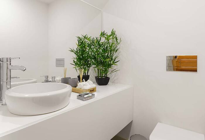 bathroom decor white bathroom with two bamboo trees in front of a large mirror