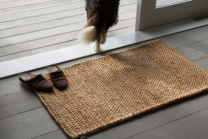 entrance mat brown slippers and a dog walking away