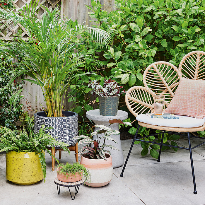 garden chill corner in a garden with living plants in different planters and a beautiful designer chair