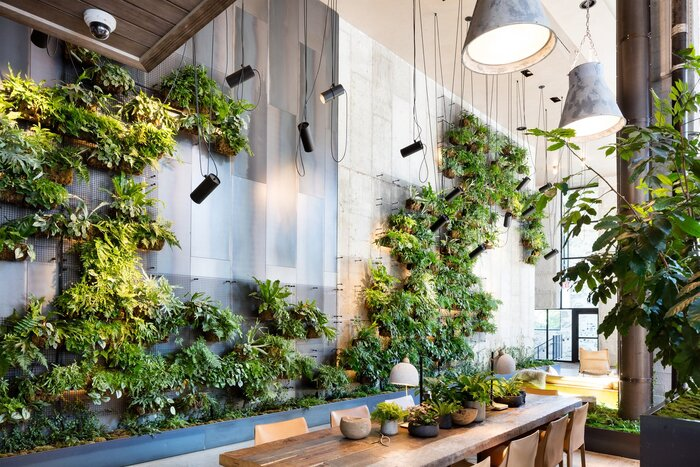 green hall design with a lot of living plants wooden table in the middle and modern lamps