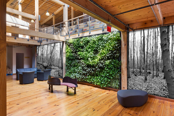innovative interior design in an all wooden villa with a green living wall