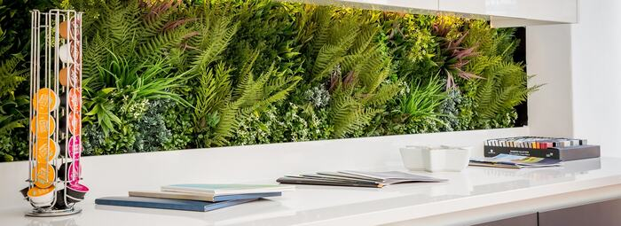kitchen wall green live countertop with living plants in an all white space