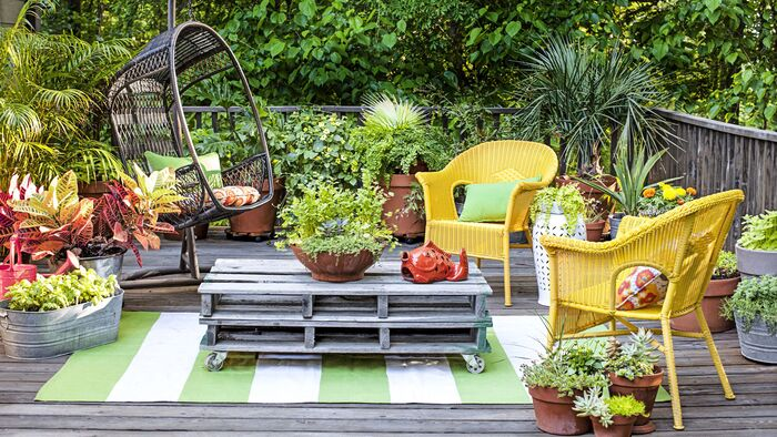 pretty garden with bright yellow furniture on a wooden deck with a lot of living green plants around