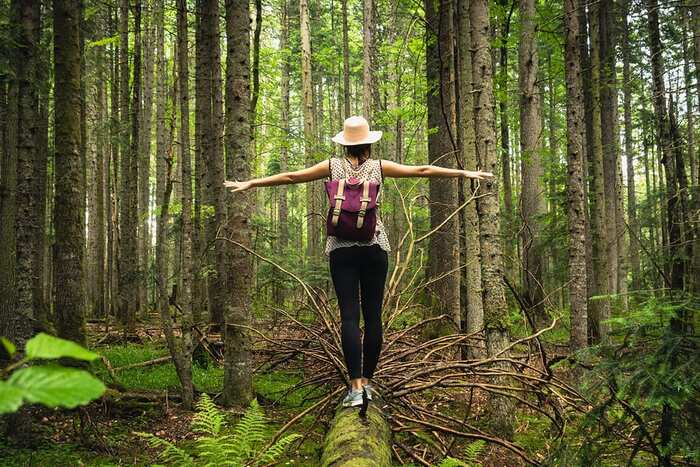 connect to nature woman with a backpack in the middle on a forest walking on a fallen tree trunk with her arms spread