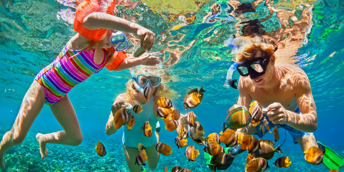 kids snorkeling under clear water with exotic fish