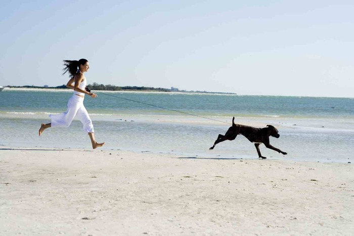 summer on the beach woman in white with black hair running on a sandy beach with a large dog