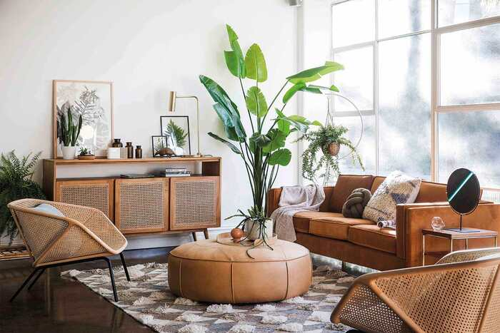 natural materials in the interior leather furniture large living plants in a living room with a large window