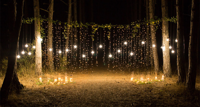 outdoor party lights wall of twinkling lights between the trees in a forest