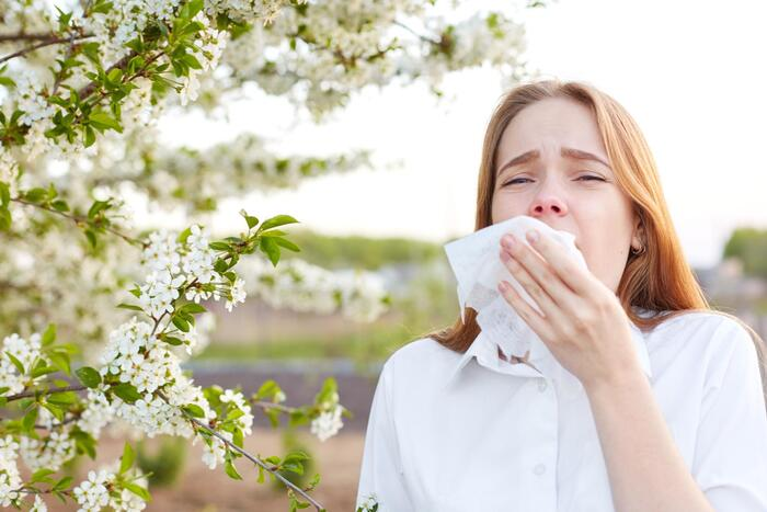 body seasonal changes woman in white shirt in front of a blossoming tree with a handkerchief in front of her face sneezing