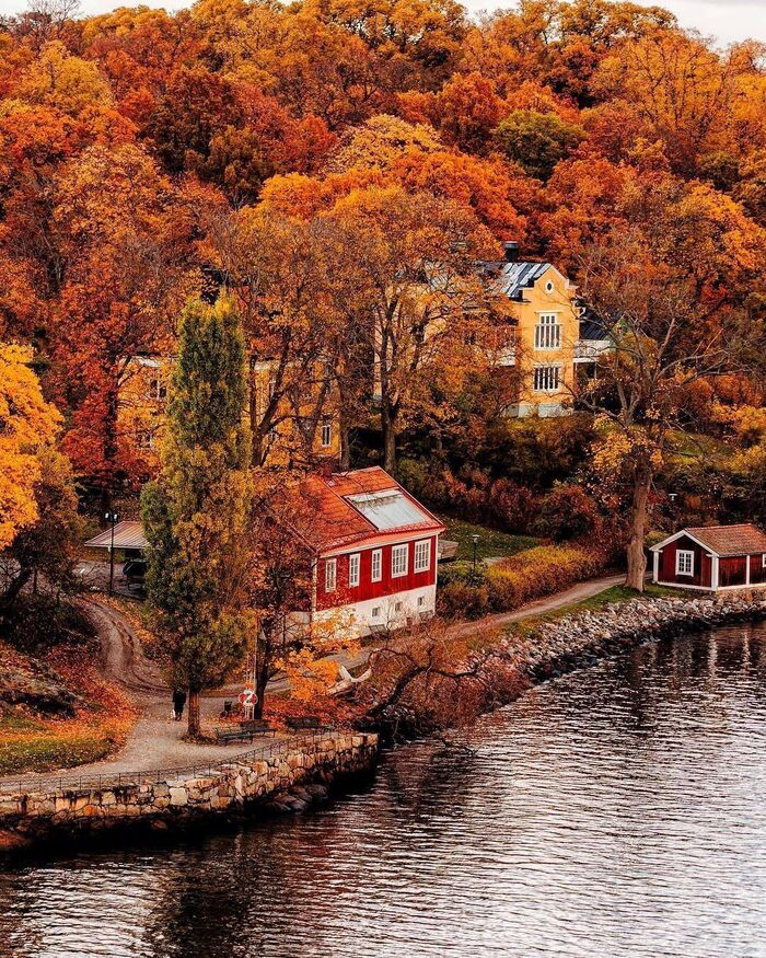 europe at fall river bank with colorful villas and a forest with foliage fall trees