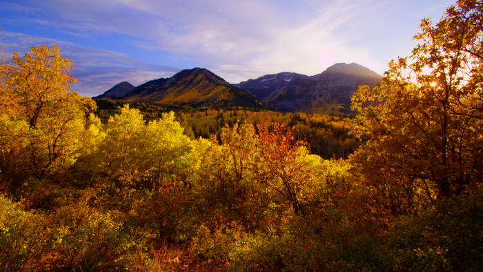 Fall drives nature landscape with mountains in the background with colorful trees and leaves