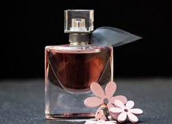 Cologne vs. Perfume What You Need To Know