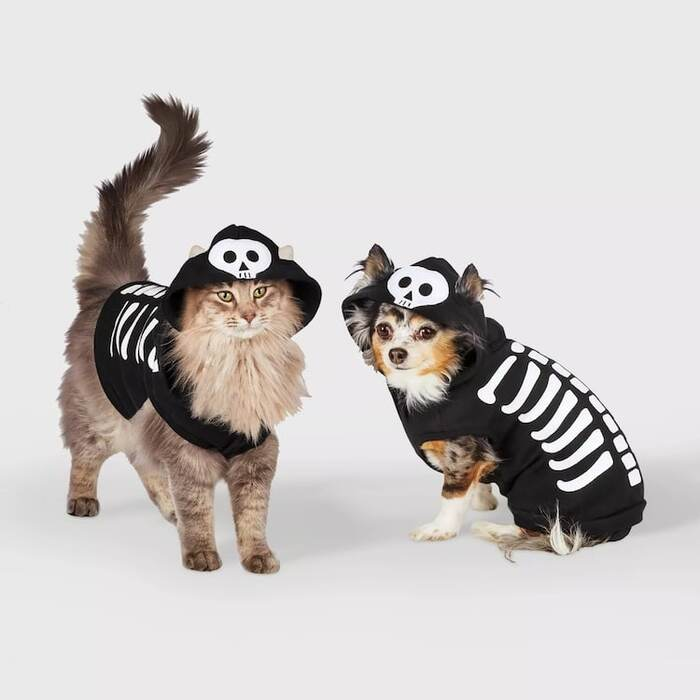 cat and dog in black capes with skeletons on them dressing the pets for Halloween